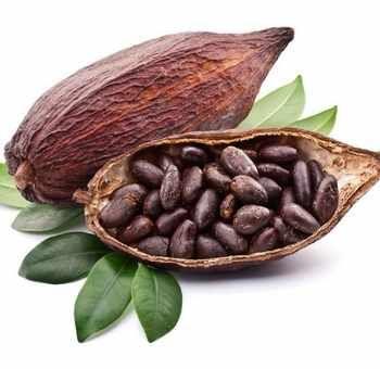 Compotée de légumes au cacao