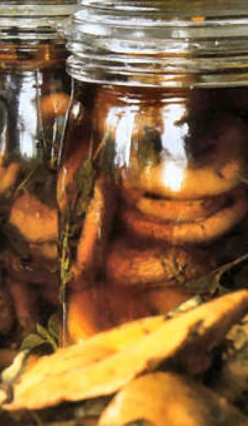 Champignons au vinaigre