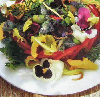 La salade du jardin fleuri